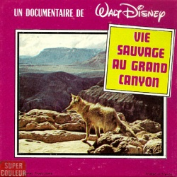 Vie sauvage au Grand Canyon